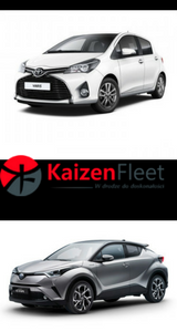 toyota fleet management